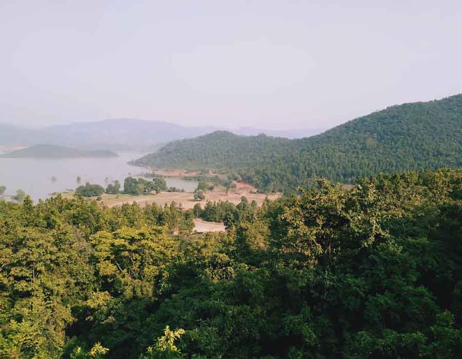 Bison (Rajbari) National Park Tripura